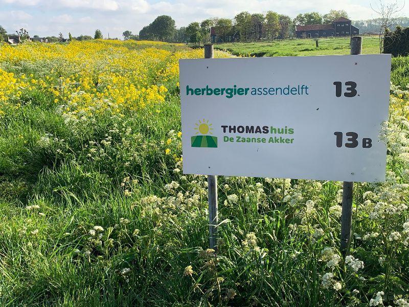 Herbergier Assendelft ligt naast Thomashuis Zaanse Akker