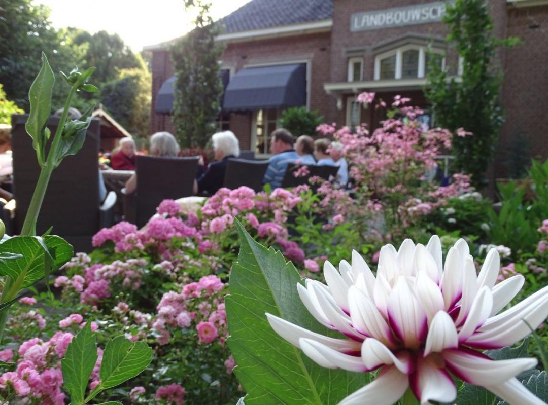 Genieten met elkaar in de tuin van Herbergier Oldeberkoop